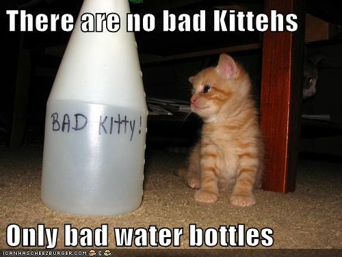 There are no bad Kittehs  Only bad water bottles