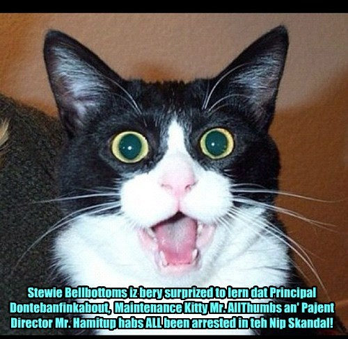 Many Skolars ar stunned by teh resent developments in teh infamous KKPS Nip Skandal!