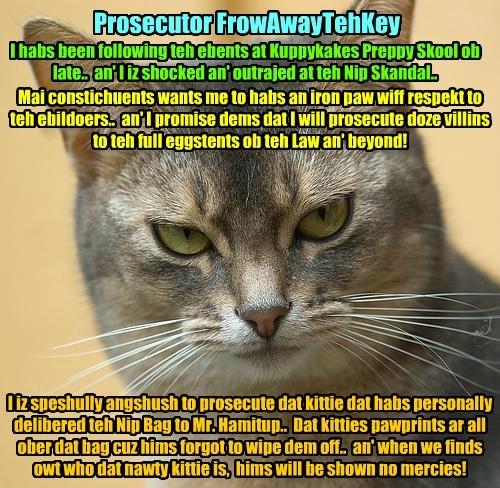 Prosecutor FrowAwayTehKey speaks out on teh Catnip Scandal at KKPS..