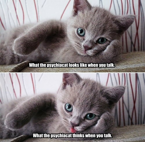 What the psychiacat looks like when you talk.