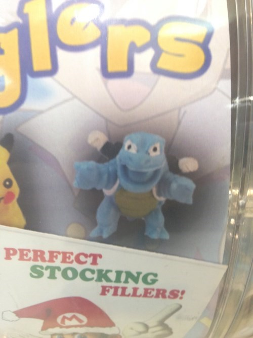 Pokémon,blastoise,stockings