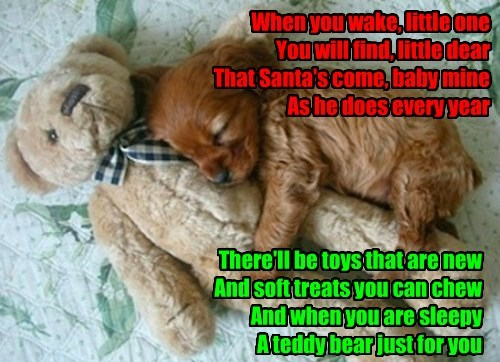 A Christmas song for the new puppy