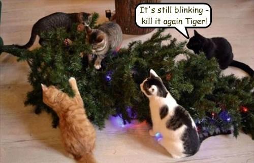It's still blinking - kill it again Tiger!