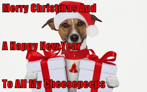 Merry Christmas And A Happy New Year To All My Cheesepeeps