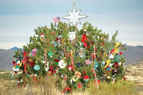 Elves magically decorate a Juniper on interstate I17 north of Phoenix, for 30 years