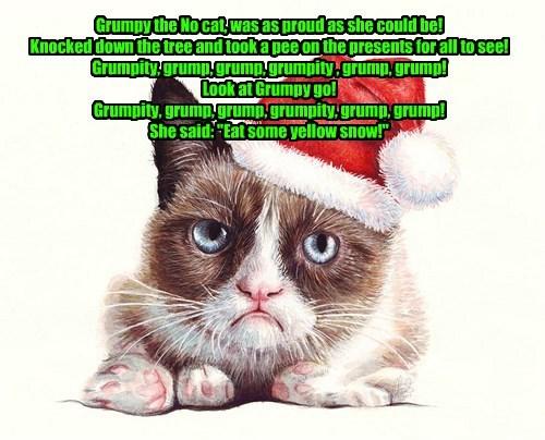 Grumpy the No Cat!