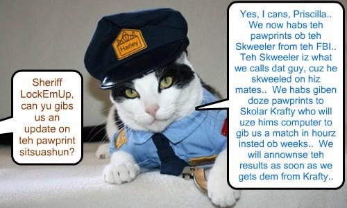 Sheriff LockEmUp answers reporters kwestions abowt teh Pawprint process in teh KKPS Nip Skandal Case..  Results to identify teh Skweeler kittie ar eggspected bery soon..