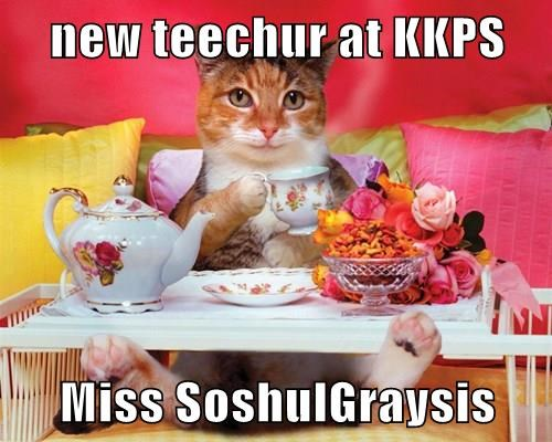 new teechur at KKPS  Miss SoshulGraysis