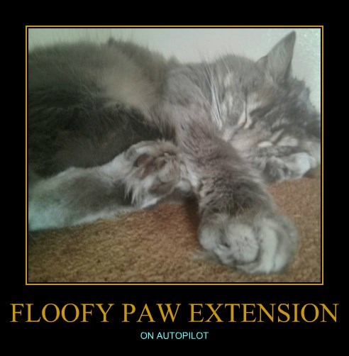 FLOOFY PAW EXTENSION