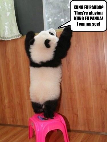 KUNG FU PANDA? They're playing  KUNG FU PANDA! I wanna see!