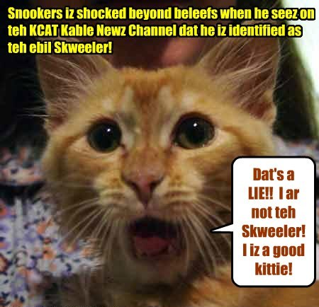 No one iz mor surprized den Snookers himselfs dat he iz fingered as teh notorious Skweeler!