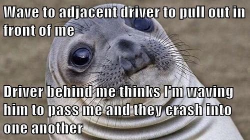 whoops,seal,awkward moment seal