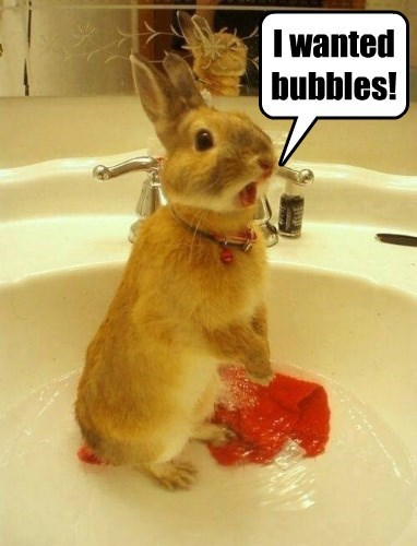 Bubbles!  My Bubbles?