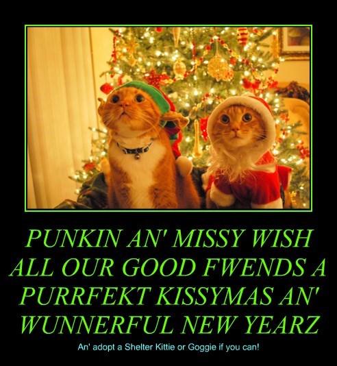 PUNKIN AN' MISSY WISH ALL OUR GOOD FWENDS A PURRFEKT KISSYMAS AN' WUNNERFUL NEW YEARZ