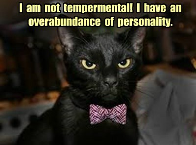 I  am  not  tempermental!  I  have  an  overabundance  of  personality.