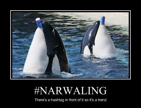 #NARWALING