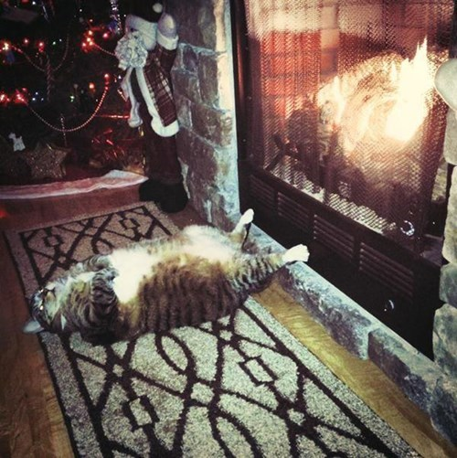 'Chestnuts roasting by an open fire...'