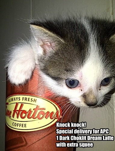 Knock knock! Special delivery for APC 1 Dark Choklit Dream Latte with extra squee