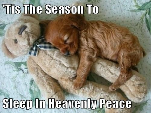 'Tis The Season To  Sleep In Heavenly Peace