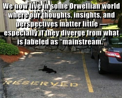 """We now live in some Orwellian world where our thoughts, insights, and perspectives matter little — especially if they diverge from what is labeled as """"mainstream."""""""