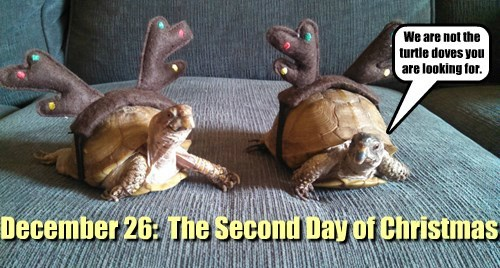 December 26:  The Second Day of Christmas