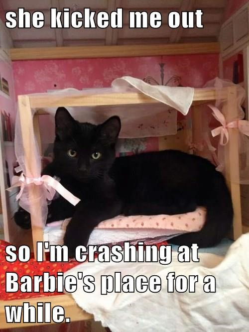 she kicked me out  so I'm crashing at Barbie's place for a while.