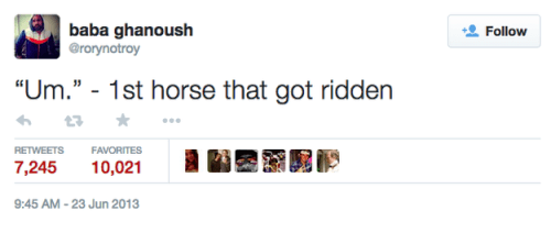 twitter,clever,horse