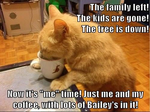 "The family left!                                                 The kids are gone!                                                              The tree is down!  Now it's ""me"" time! Just me and my coffee, with lots of Bailey's in it!"