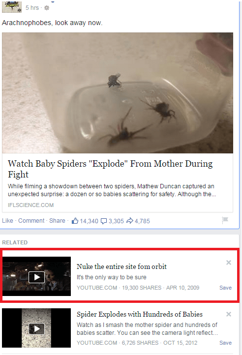 spiders,Kill It With Fire,suggestion,juxtaposition,failbook,g rated