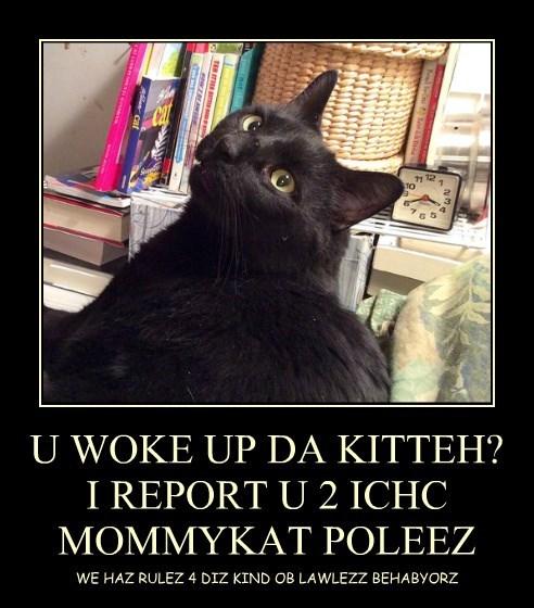U WOKE UP DA KITTEH? I REPORT U 2 ICHC MOMMYKAT POLEEZ