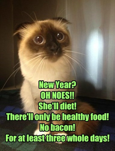 New Year? OH NOES!! She'll diet! There'll only be healthy food! No bacon! For at least three whole days!