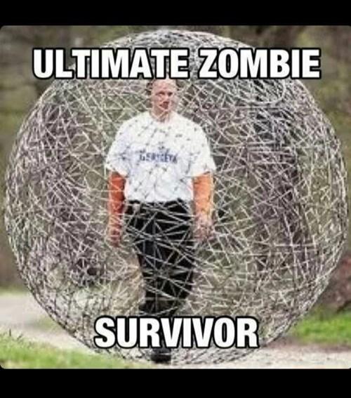 survivor,hamster ball,zombie
