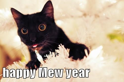 happy Mew year