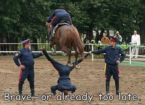ouch,brave,jump,horse