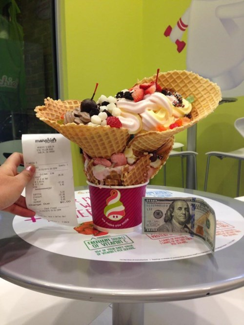 They Were Told They Could Get as Much FroYo That You Could Fit into a Cup for $5. This Was the Result.