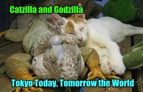 godzilla,world domination,Cats,iguana,monster