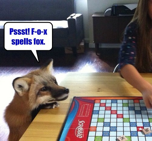 You don't have those letters, but I just wanted you to know I can spell fox