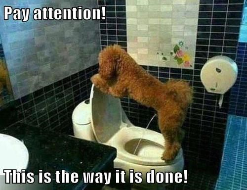 Pay attention!  This is the way it is done!