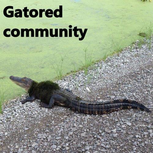 Gatored community