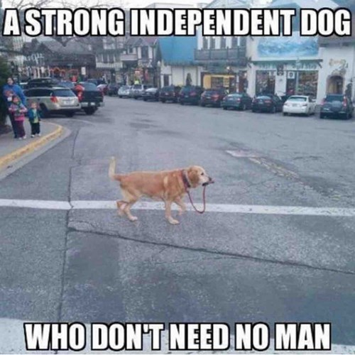 don't need no man!
