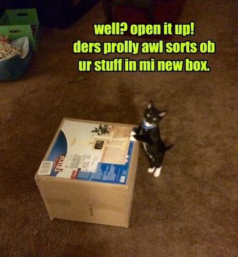well? open it up! ders prolly awl sorts ob  ur stuff in mi new box.