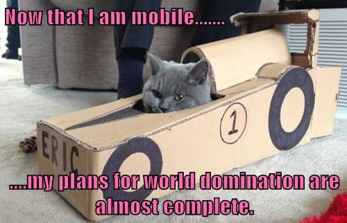 Now that I am mobile.......  ....my plans for world domination are almost complete.