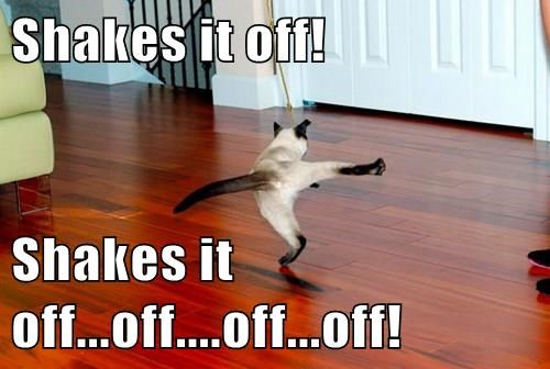 Shakes it off!  Shakes it off...off....off...off!