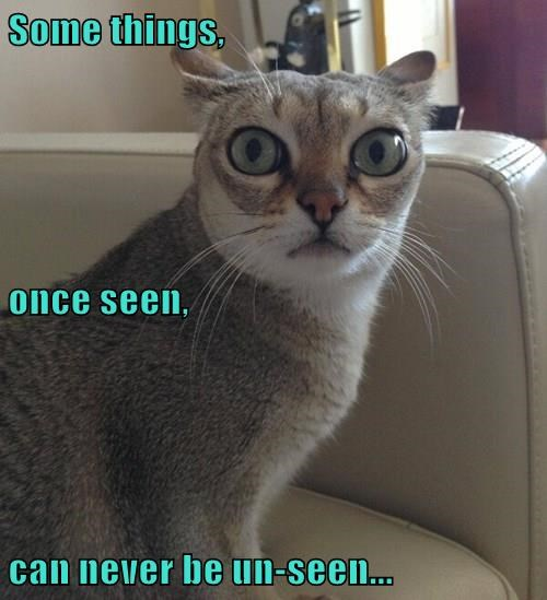 Some things, once seen, can never be un-seen...