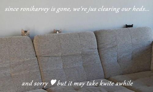 since roniharvey is gone, we're jus clearing our heds...  and sorry ♥ but it may take kwite awhile