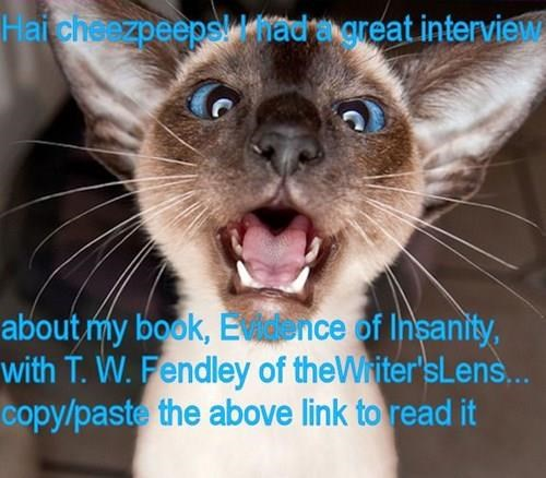 The Writer's Lens: http://www.thewriterslens.com/2015/01/carol-piners-evidence-of-insanity-funny.html