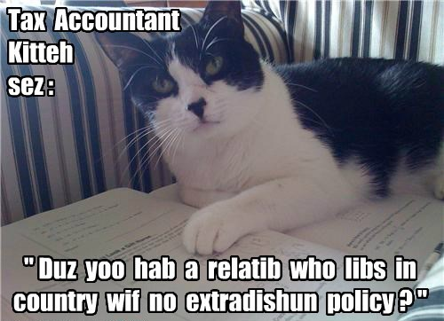 Tax Account Kitteh thought she had seen everything until today...