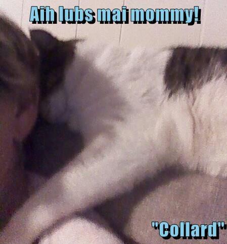 "Aih lubs mai mommy!  ""Collard"""