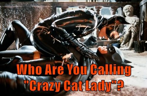 """Who Are You Calling """"Crazy Cat Lady""""?"""
