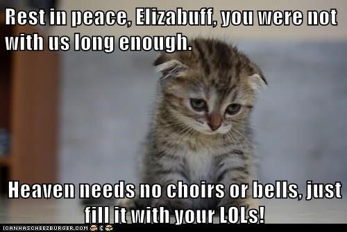Rest in peace, Elizabuff, you were not with us long enough.  Heaven needs no choirs or bells, just fill it with your LOLs!
